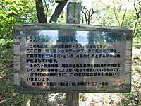 Cimg8588543